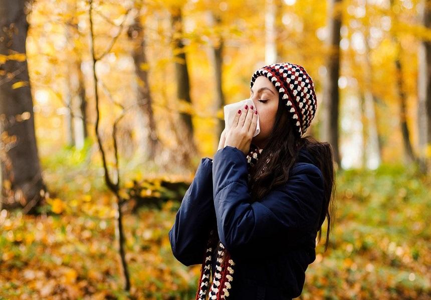 آلرژی فصلی پاییز چیستundefined